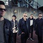 New Order 2015
