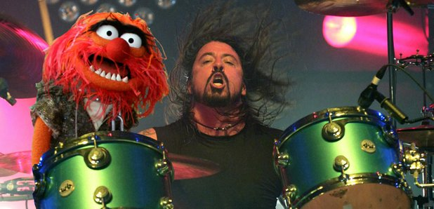 Dave Grohl muppets