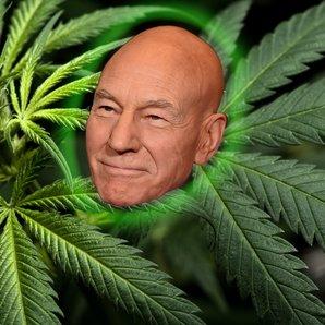 Patrick Stewart Marijuana